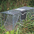 Rodent Traps and Poisons