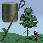 Tree Staking and Guying