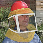 Insect Protection